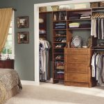 Closet Organization Ideas minimalis image