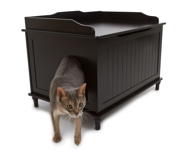 Image of: Litter Box Enclosure Design