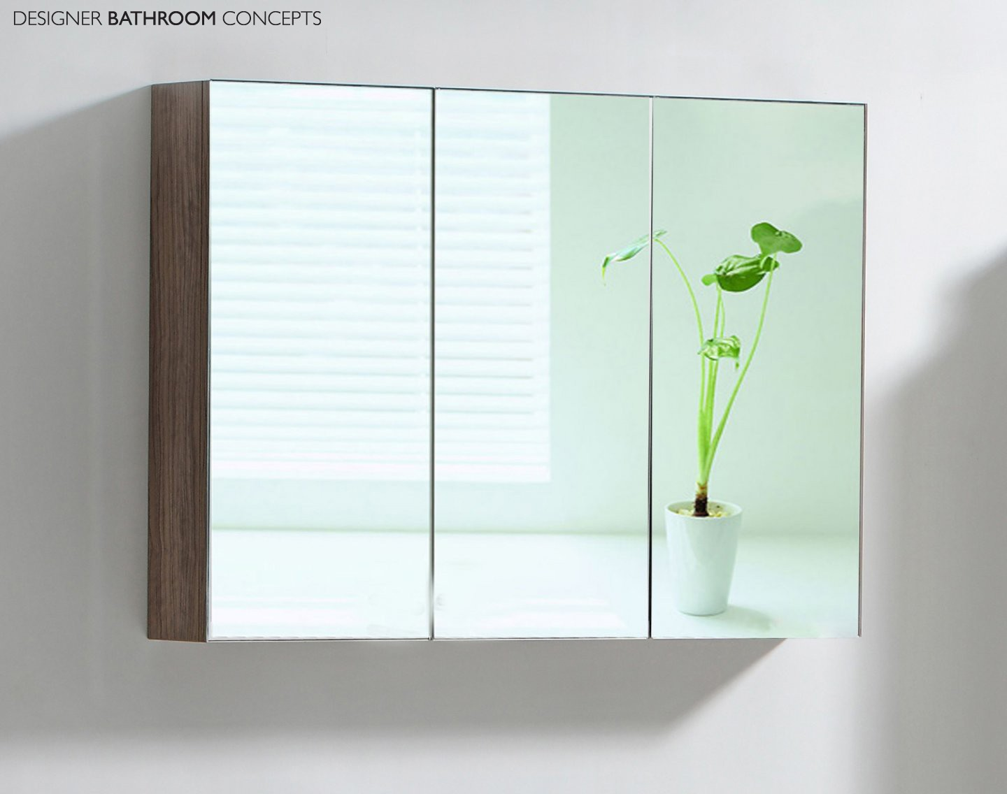 Image of: Mirrored Cabinet Larger