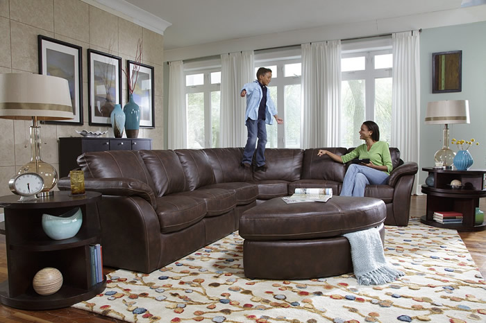 Image of: eleagnt living room sectionals