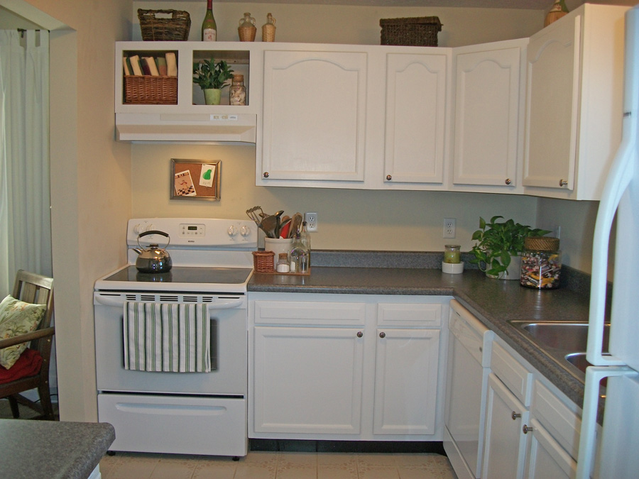 Image of: painting kitchen cabinets image