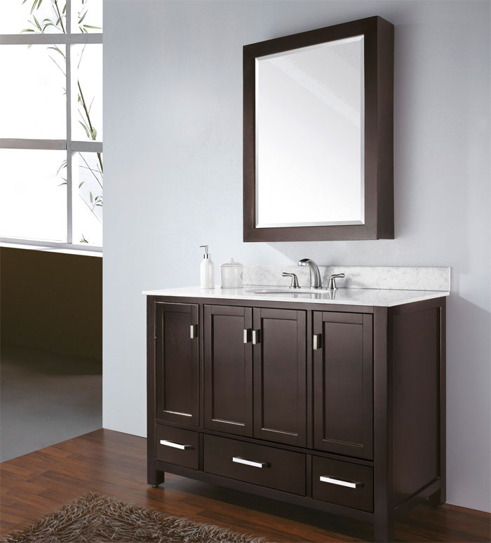 Picture of: 48 bathroom vanity with mirror
