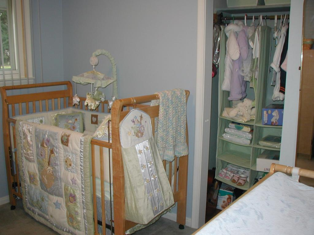 Image of: Awesome Nursery Organizer