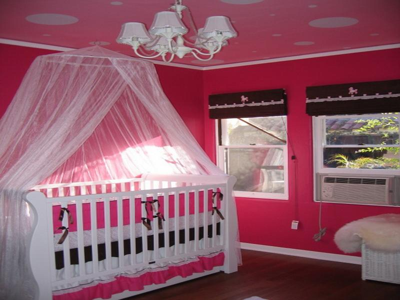 Image of: Baby Girl Nursery Themes Image