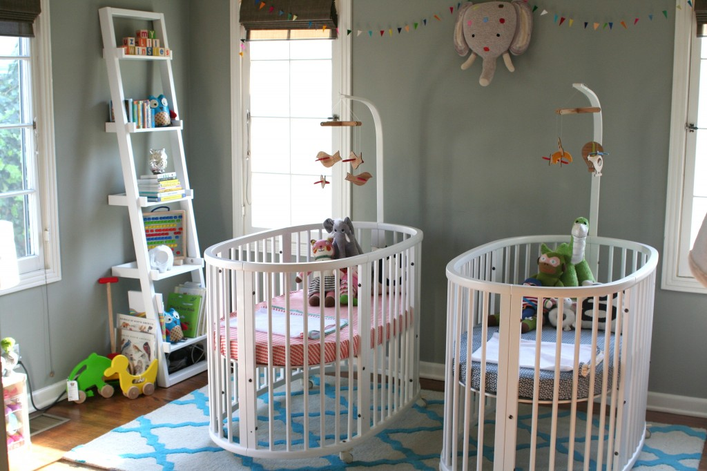 Beauty Twin Nursery Ideas