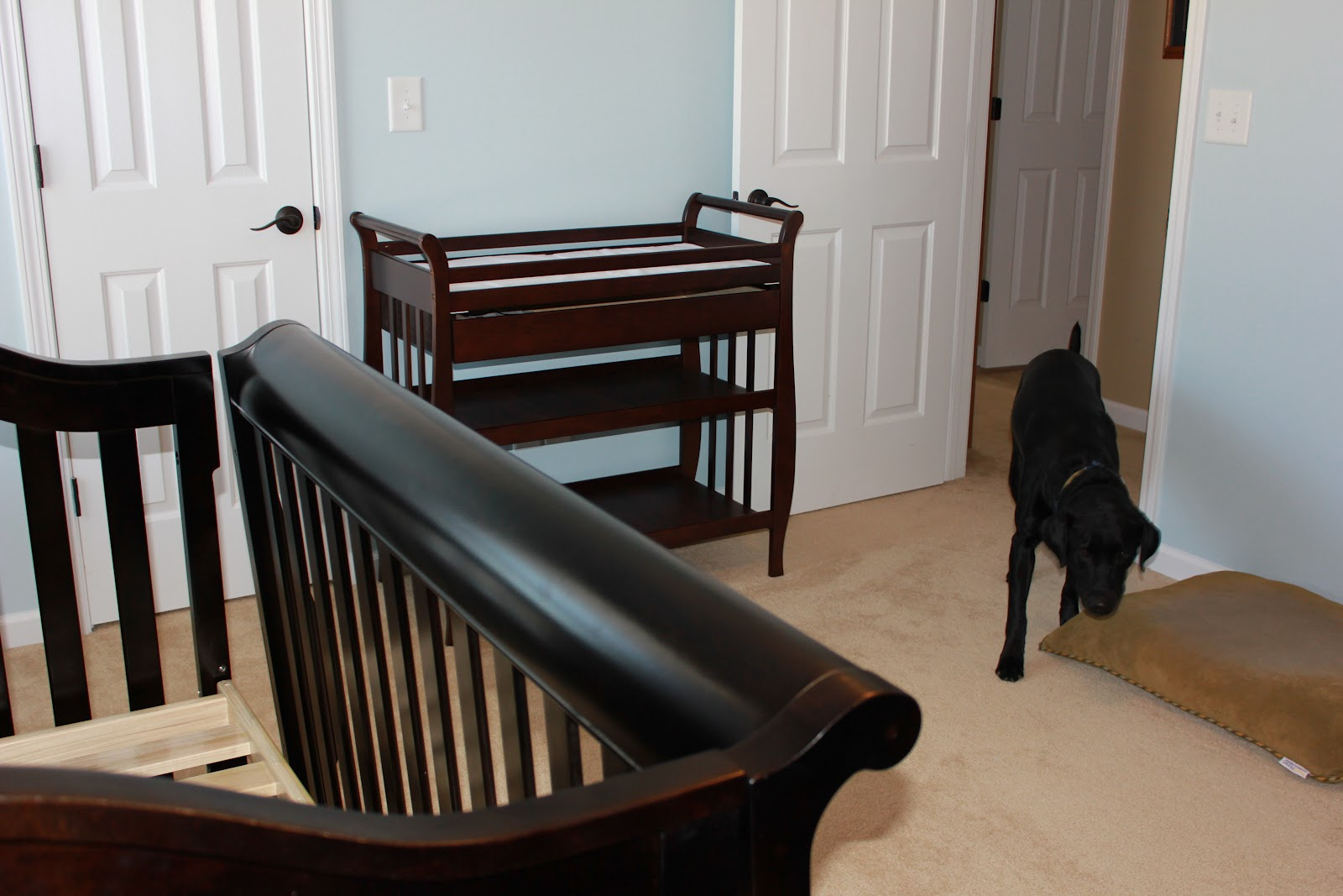 Picture of: Glider Rockers for Nursery in the Bed dog