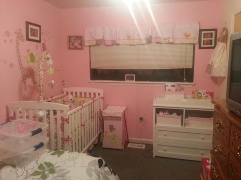 Picture of: Jungle Jill Nursery for Girl Baby