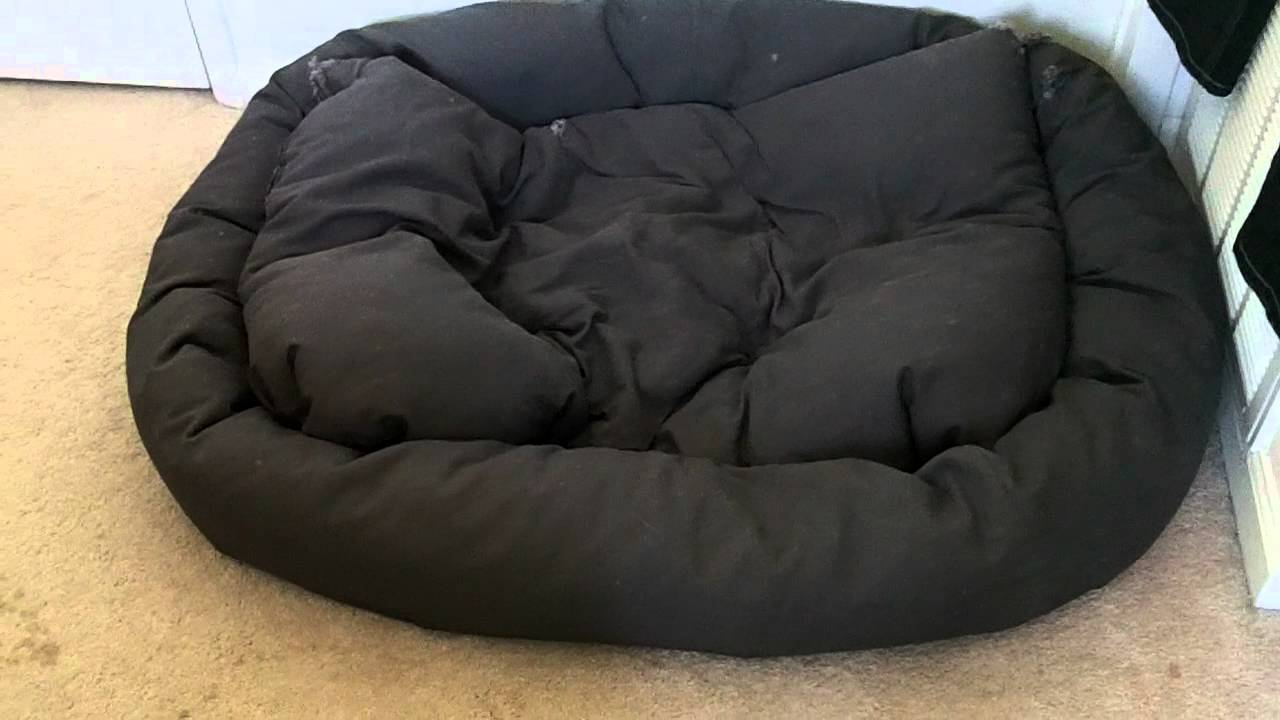 Black Great Dane Dog Beds
