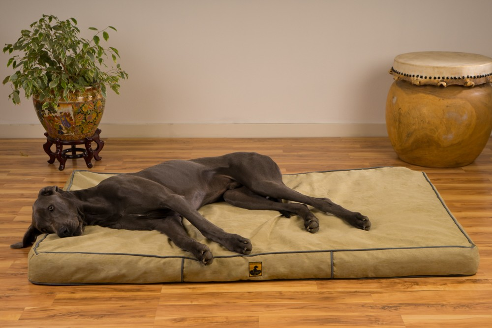 Great Dane Dog Beds Picture