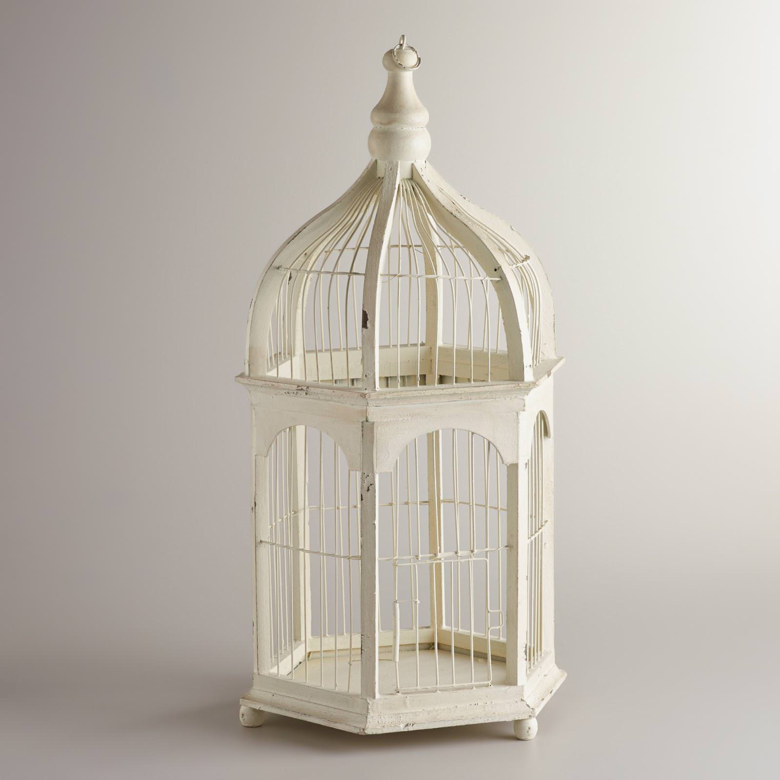 Image of: Decorative Bird Cages Wholesale