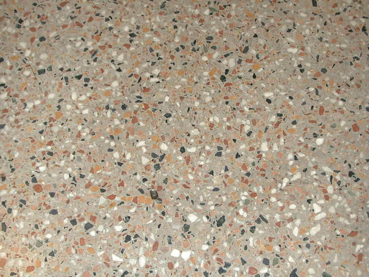 Picture of: Terrazzo Floors Denver