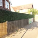 Boxwood Hedge Fence