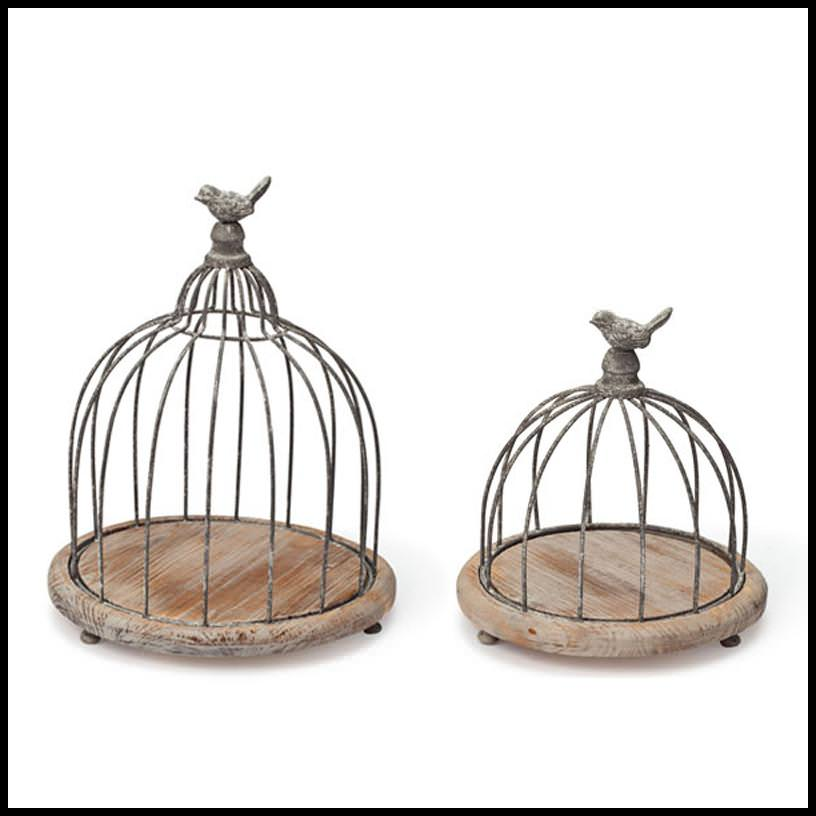 Image of: Decorative Bird Cage Bunnings