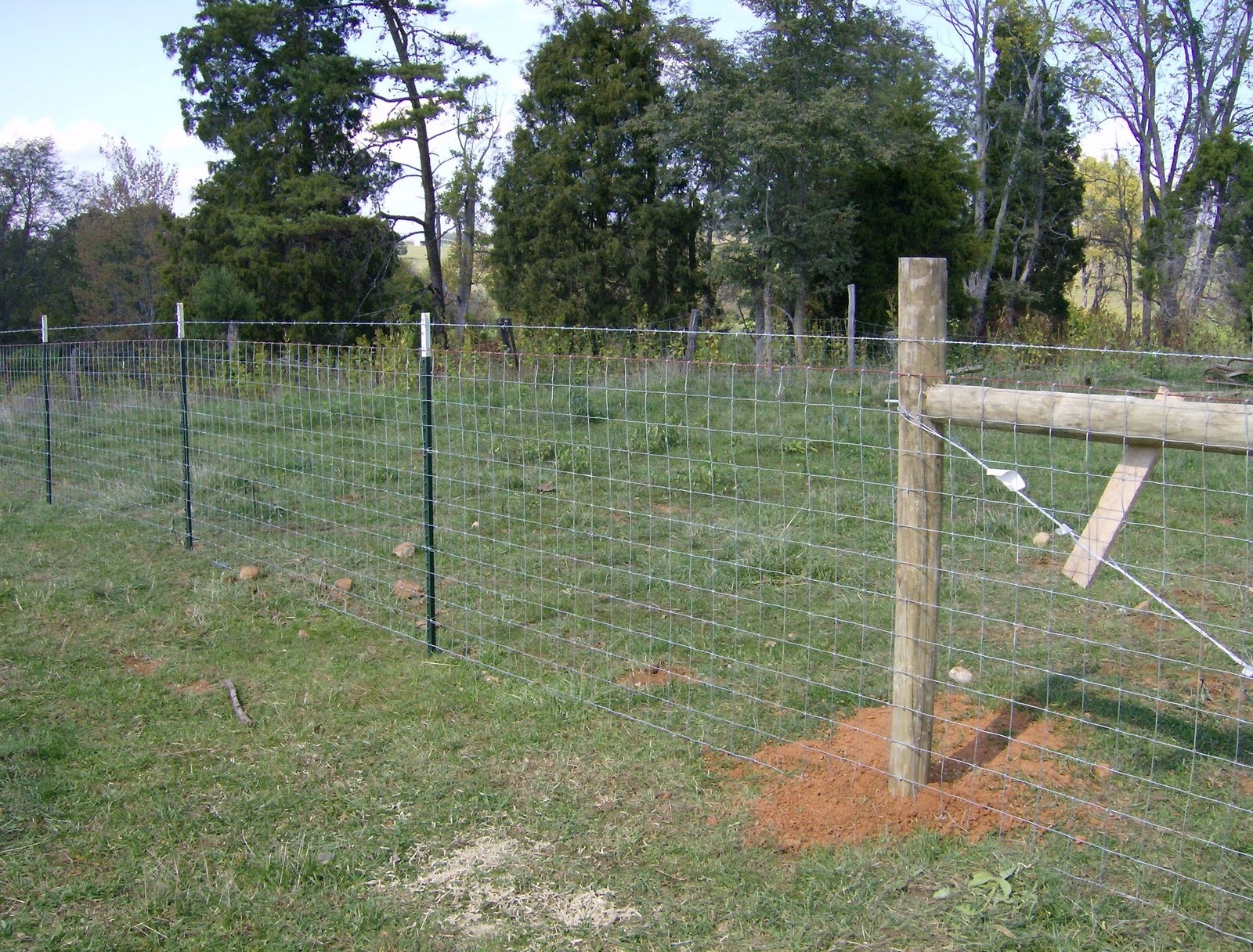 Image of: Hog Wire Fence Building Tips