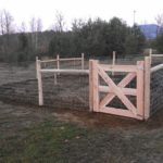 Hog Wire Fence For Dogs