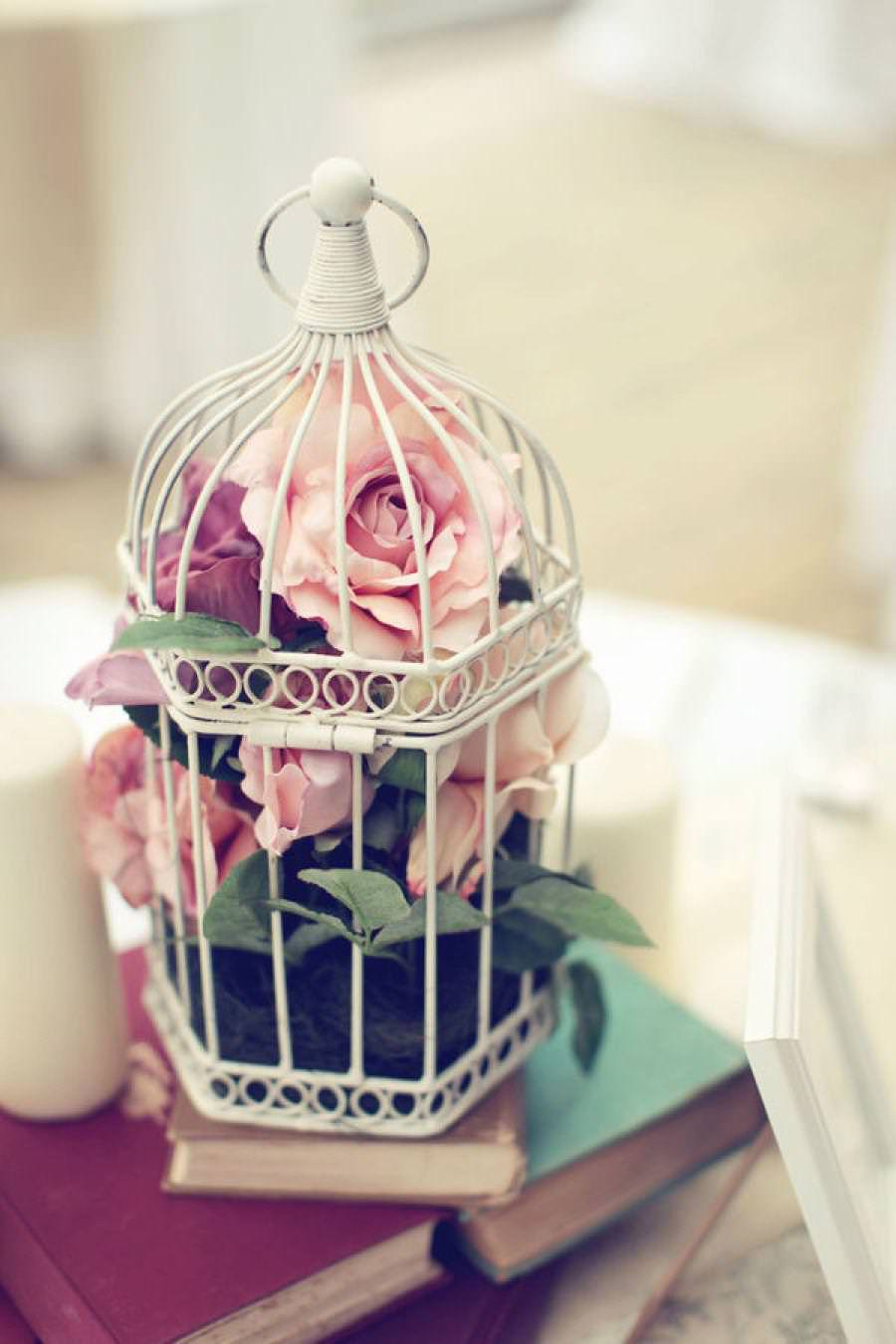 Image of: small bird cages decoration
