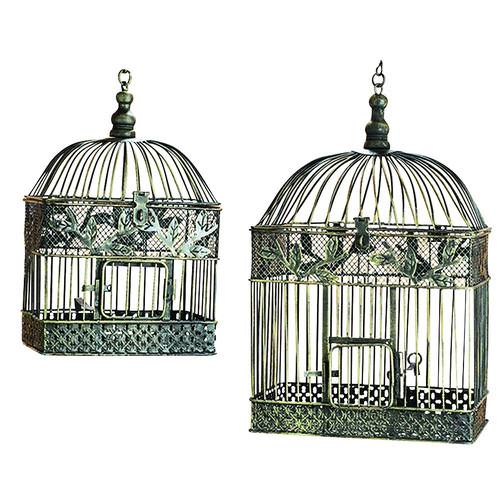 Image of: Decorative Bird Cage Calgary