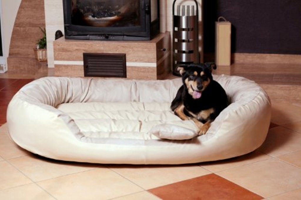 Indestructible Great Dane Bed