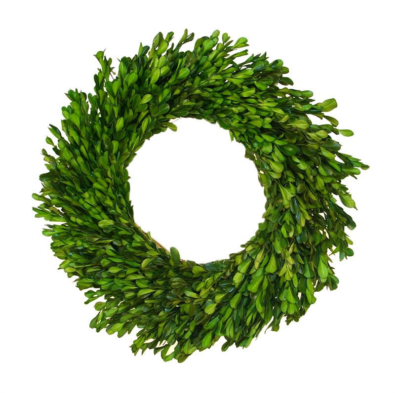 Picture of: Boxwood wreath photo
