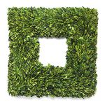 Boxwood wreath square