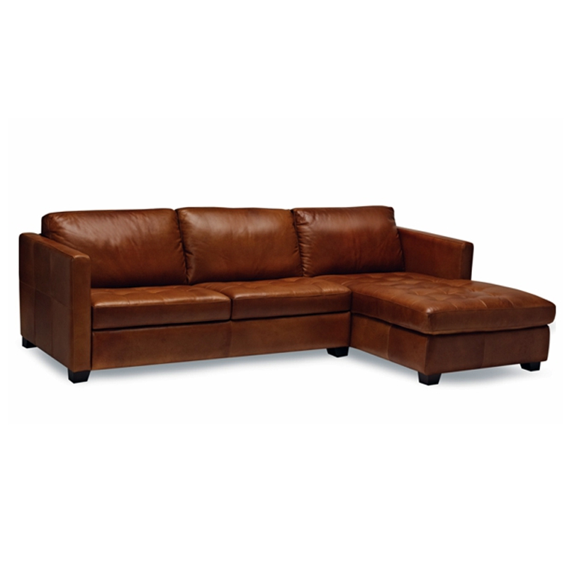 Image of: Delamont Leather Sectional Sofa