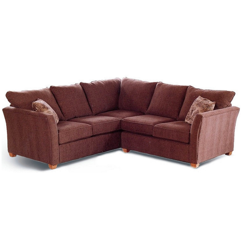 Image of: Sectional Sofa Bed