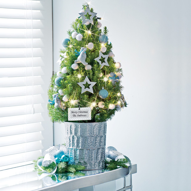 Picture of: Awasome Tabletop Christmas Trees