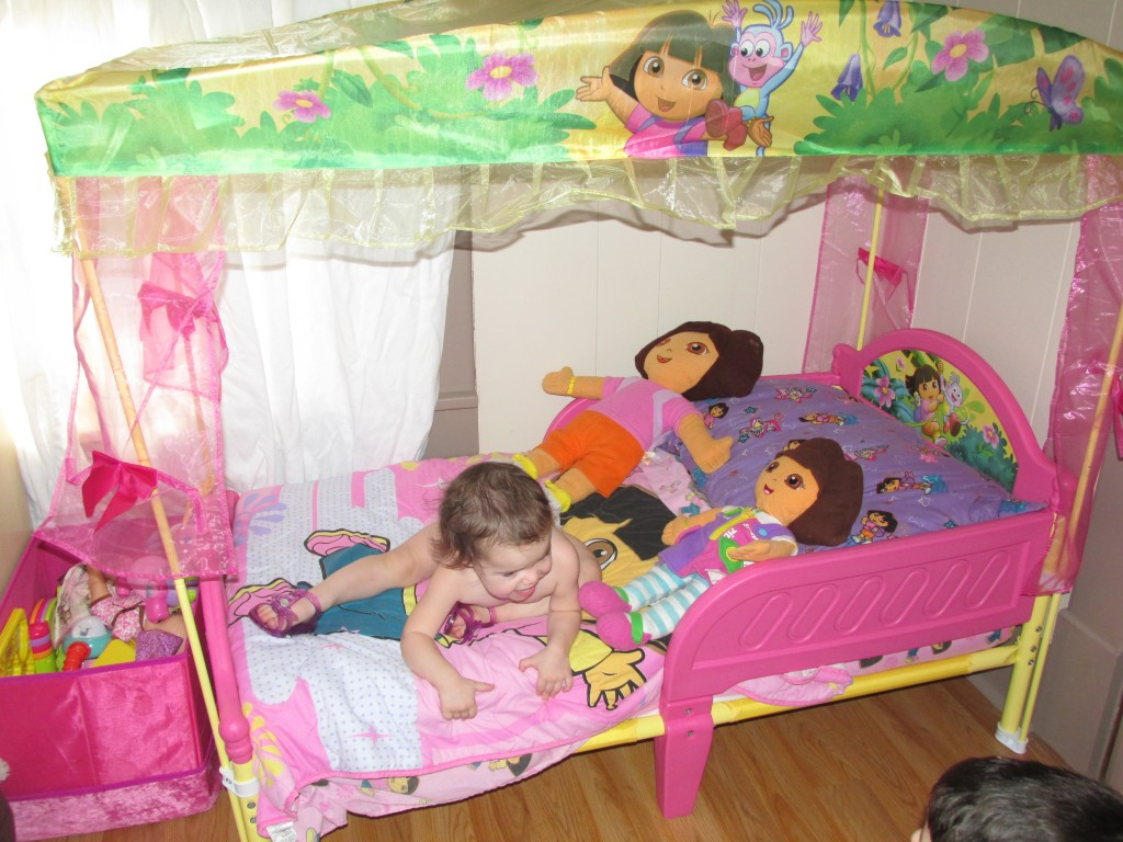 Image of: Dora Toddler Bed Assembly Instructions