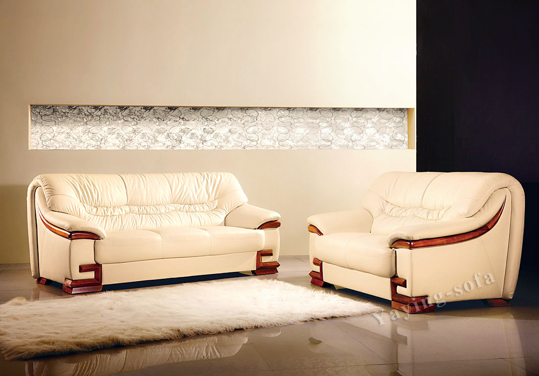 Image of: Great sectional sofas