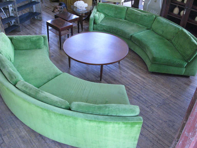 Fresh Color For Curved Sofa
