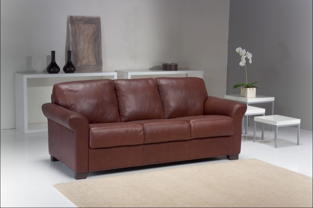 Image of: italian leather sofa