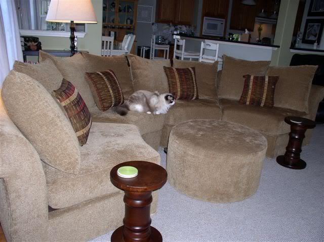 Image of: Microfiber Sofa Photo