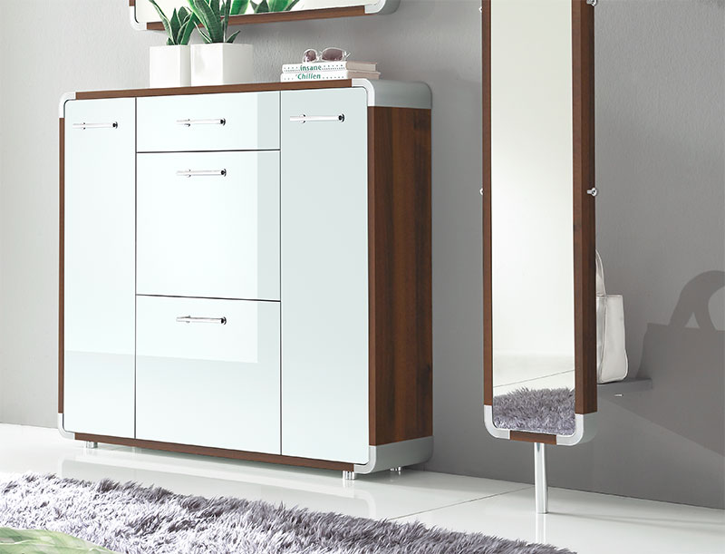 Modern Shoe Cabinet With Doors Ikea