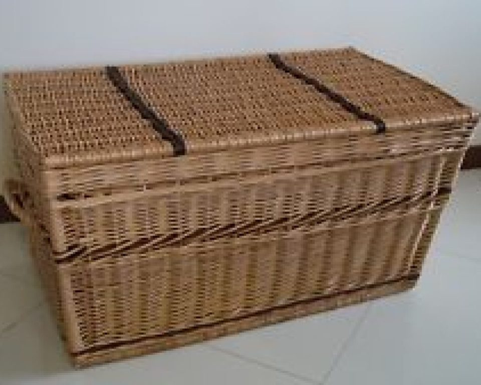 Image of: Wicker Storage Trunk Walmart