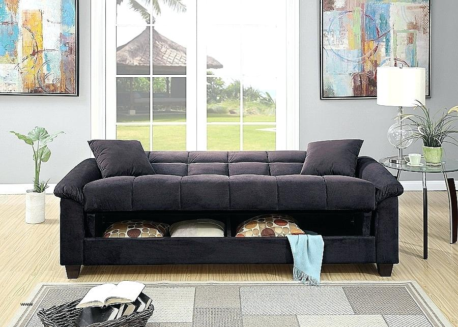 Image of: Black Convertible Sofa Bed with Storage
