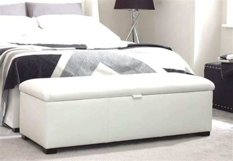 Image of: End Of The Bed Storage Ottoman