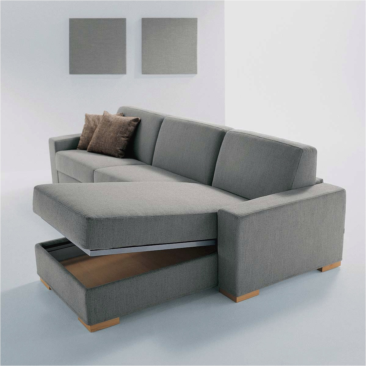 Image of: Sleeper Convertible Sofa Bed with Storage