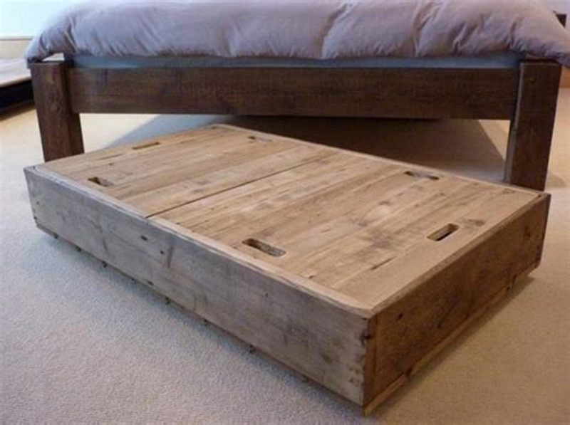 Image of: Best Under Bed Gun Storage Plans